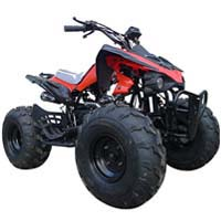 110cc Comet Sport ATV W/Reverse (Semi or Fully Auto)