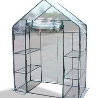 High Quality Mini Greenhouse Mid Walk-in Green House