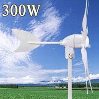 300 Watt DC 12V 6 Blade Wind Turbine Generator