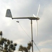 WG1500W 24V Wind Turbine Generator Wind Power System