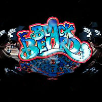 Black Beard Cherry Master LCD Video Slot Machine Game