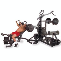 Freeweight Leverage Gym Workout Machine