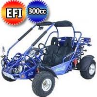 300cc XRX Go Kart