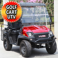 Gas Golf Cart UTV Hybrid Linhai Big Horn 200 GVX 4 Seater Side by Side UTV