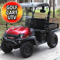 Brand New Gas Golf Cart UTV Hybrid Linhai Big Horn 200 VX Side by Side UTV