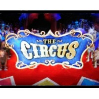 The Circus by Astro