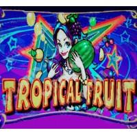Tropical Fruit / Wild Fruit