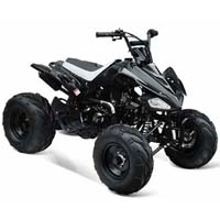 125cc Intruder Midsize ATV