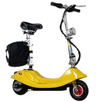 250W Foldable Electric Motorized Scooter Bike