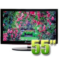 MirageVision Silver Series 55 Inch 1080p LCD Outdoor HDTV