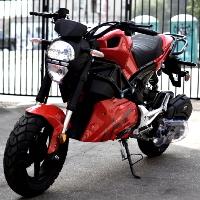 Amigo 150cc 4 Stroke Gas Moped Scooter - MORRO 150cc