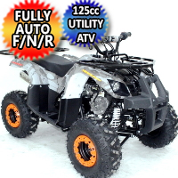 125cc Atv Fully Automatic w/Reverse Utility 4 Wheeler - ACE B125-7