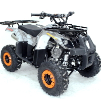 125cc Atv Fully Automatic w/Reverse Utility 4 Wheeler - ACE B125-7