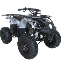 125cc Quad Utility 4 Stroke Fully Auto w/ Reverse ATV - ACE B125