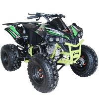 125cc Quad Utility 4 Stroke Fully Auto w/ Reverse ATV - ACE C125 CONQUEROR