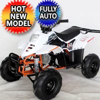110 Atv Fully Automatic Sport 107cc ATV 4 Wheeler - ACE D110