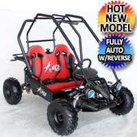 125cc Go Kart Automatic With Reverse - ACE G125