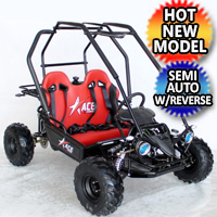 125cc Go Kart Semi Automatic With Reverse - ACE G125