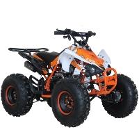 107cc Sport ATV 4 Stroke Fully Auto w/ Reverse 125 Quad - MDL-125A43