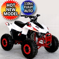 110cc Atv Fully Automatic w/Reverse Sport 4 Wheeler - ACE N110
