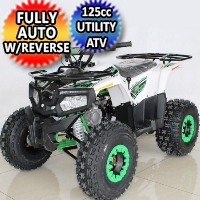 125cc Atv Fully Automatic w/Reverse Utility 4 Wheeler - ACE T125 THOR