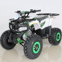 125cc Atv Fully Automatic w/Reverse Utility 4 Wheeler - ACE T125 THOR