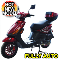 150cc Scooter Razor 150 4 Stroke Scooter Moped
