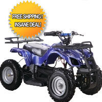 350w 24v Taurus Electric ATV Quad