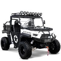 BMS® Beast 1000cc Utility Vehicle 2WD/4WD UTV