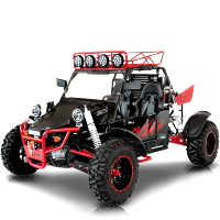 BMS V-Twin 800 Go Kart Sport Side by Side 4x4 Fully Automatic Dune Buggy