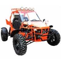 Brand New V-TWIN 800cc Dune Buggy Go Kart