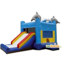 Commercial Grade 13' x 13' Inflatable Sea World Combo Bouncer Bouncy House