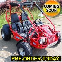 300cc Go Kart CVT EFI Fully Automatic 17.4 HP w/ Reverse - 300XRS-E