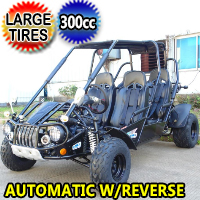 300 XRS4 Go Kart Trailmaster 300cc CVT Automatic with Reverse