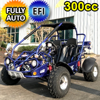 300cc Go Kart XRX-E EFI Fuel Injected Automatic CVT w/Reverse Dune Buggy