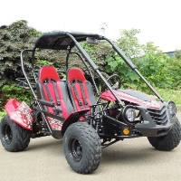 150cc Trailmaster Blazer 150 Go Kart Automatic CTV With Reverse