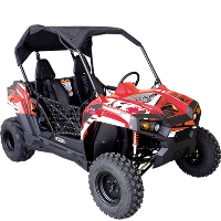 Brand New 300cc Trailmaster Challenger 300E UTV EFI Side by Side Utility Vehicle