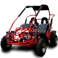 200cc Go Kart MID XRX Two Seater Go- Kart - Size of a 125cc