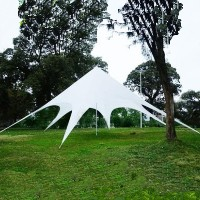 16.4 Foot Star Shaped Party Tent Canopy Gazebo