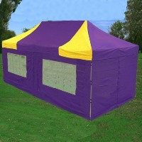 Purple & Yellow 10'x20' Pop Up  Canopy / Tent