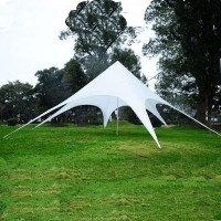 13 Foot Star Shaped Party Tent Canopy Gazebo