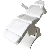 Brand New Motorized Spa and Salon Chair/Table
