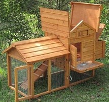 High Quality Chicken Coop with Inside Nesting Box