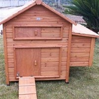High Quality Chicken Coop with Slide Out Cleaning Tray