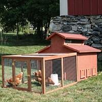 High Quality Chick-N-Barn
