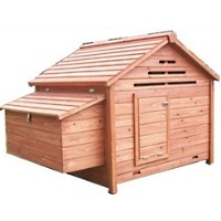 High Quality Backyard Chicken Coop House