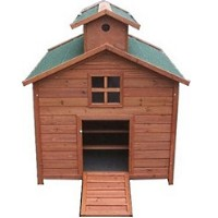 High Quality Chicken Coop House with 3 Internal Perches