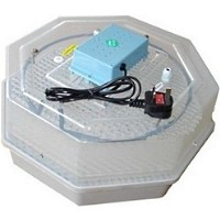 High Quality Air Fan Incubators with Adjustable Temperature Thermostat