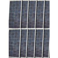 High Quality 120 Watt Solar Panel - 10 Panels, 1200 Total Watts