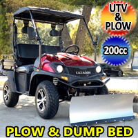 200cc UTV With Snow Plow & Dump Bed Gas Golf Cart Utility Vehicle Snow Master VX